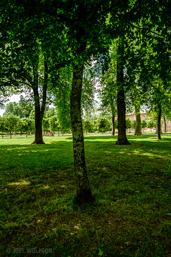 A nearby park in the small town where I stayed. I took my daughter there for the playground but I loved the feel of it- parts of it almost like an enchanted forest. I got in the shadows and up close to a tree because I liked the dappled light coming through with the forest like trees changing to an urban background of people and an art museum in the distance. X-Pro2 in EVF mode with Fujinon 14mm f2.8 (21mm FF equiv) f8.0, 1/320 sec., ISO 1250